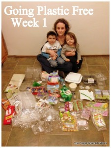 Show Your Plastic Challenge Re-visited During Plastic Free July